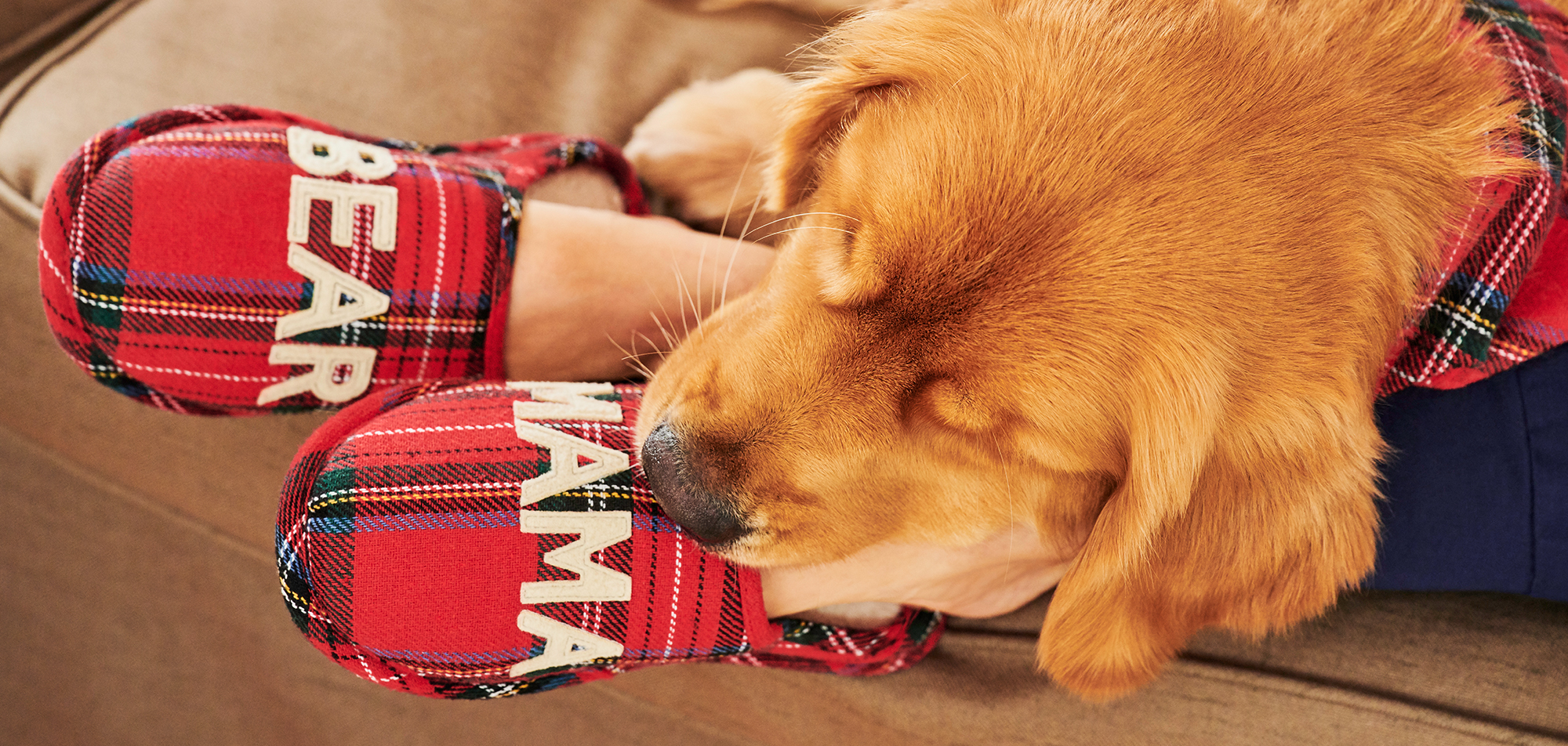 A dog resting his head on a pair of feet wearing mama bear slippers